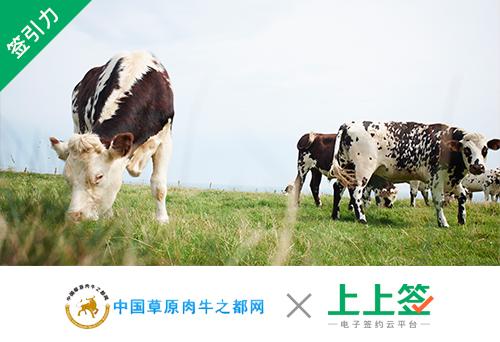 【签引力精选】中国草原肉牛之都网引入电子签约升级肉牛供应链